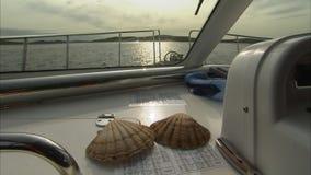 在小船的两壳 股票录像