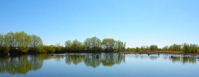 在小船的湖漂浮在它的渔夫 库存图片