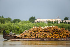在小船运输的许多木日志由水 免版税库存图片