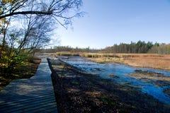 在小西部漂泊温泉镇Frantiskovy Lazne Franzensbad在秋天-捷克附近的自然保护区Soos 库存图片