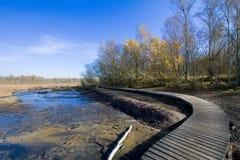 在小西部漂泊温泉镇Frantiskovy Lazne Franzensbad在秋天-捷克附近的自然保护区Soos 库存照片