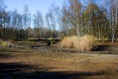 在小西部漂泊温泉镇Frantiskovy Lazne Franzensbad在秋天-捷克附近的自然保护区Soos 免版税库存照片