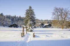 在小西部漂泊温泉镇Marianske Lazne Marienbad -捷克附近的被保存的自然区域Kladska 免版税库存图片