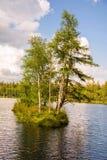在小西部漂泊温泉镇Marianske Lazne Marienbad -捷克附近的被保存的自然区域Kladska 图库摄影