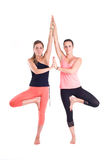 在小组/树的实践的瑜伽锻炼摆在- Vrksasana 库存图片
