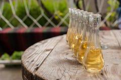 在小玻璃的李子白兰地酒在木桌上 库存照片