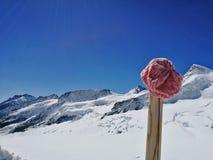 在少女峰的桃红色帽子 库存照片