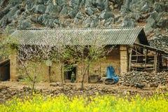 在少数族裔附近房子的油菜领域  图库摄影