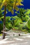 在少许棕榈树的空的吊床在库克群岛 免版税图库摄影
