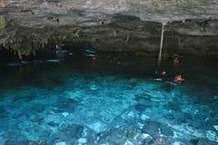 在尤卡坦半岛,墨西哥的Cenote Dos Ojos 库存图片