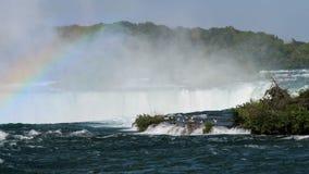 在尼亚加拉大瀑布上的海鸥 股票录像