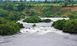 在尼罗河风景附近的jinja 免版税库存图片