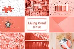 在居住的珊瑚颜色的创造性的拼贴画 库存图片