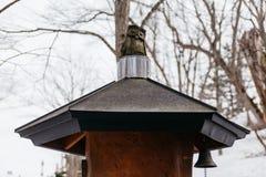 在屋顶上面的木猫头鹰雕塑有不生叶的树的在Fukidashi公园的背景中在北海道,日本 免版税库存图片