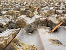 在屋顶木瓦的平的角度图 免版税库存照片