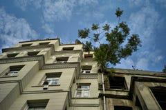 在屋顶的图 免版税图库摄影