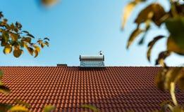 在屋顶的太阳水加热器锅炉,黄色苹果离开 免版税库存图片