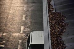 在屋顶的干燥叶子 免版税图库摄影
