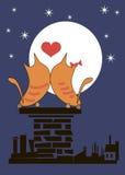 在屋顶的恋人猫 免版税库存图片