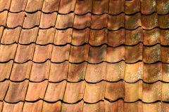 在屋顶的橙色黏土瓦片 荷兰,7月 免版税图库摄影