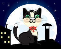 在屋顶的猫夜 库存照片