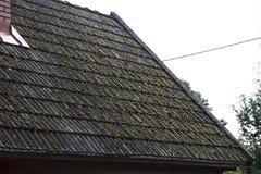 在屋顶的瓦片是隐蔽与青苔 库存图片