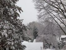 在屋顶的雪 免版税库存图片