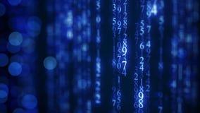 在屏幕上的蓝色数字式矩阵雨 库存照片