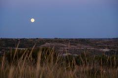 在展望期的月亮 免版税库存照片