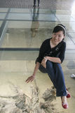 在展示在博物馆,成都,瓷的出土的乌木 免版税库存图片