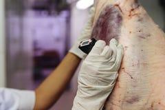 在屠杀的肉质量管理 库存照片