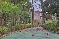 在屯门的一条大热忱的循环的道路 免版税库存图片