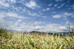 在山、绿色草甸和深蓝天空的美好的夏天风景与云彩 大高加索 阿塞拜疆 免版税库存图片