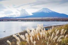 在山中湖的富士山日本的秋天季节的 库存图片