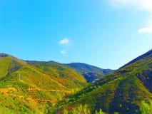 在山中的秀丽 免版税库存照片