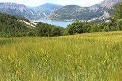 在山之间的湖Serre-Poncon在法国 库存图片
