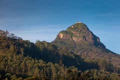 在山亚当的峰顶顶部的看法在日出, Dalhousie 库存照片
