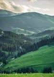 在山和森林的暴风云 免版税图库摄影