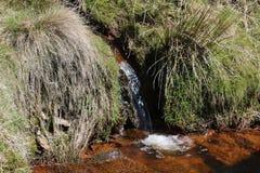 在山坡小河的小瀑布 库存照片