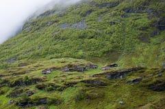 在山坡的原木小屋 库存照片