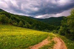 在山坡的象草的领域在多暴风雨的天气 免版税库存图片