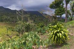 在山天际和晴朗的山坡的风暴 图库摄影