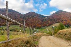 在山小山的秋天树 库存照片