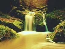 在山小河的测流堰 在石头的五颜六色的叶子到水里 生苔冰砾 免版税图库摄影