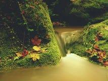 在山小河的测流堰 在石头的五颜六色的叶子到水里 生苔冰砾 免版税库存照片