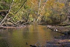 在山小河的秋天颜色 库存图片