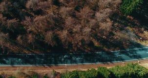 在山森林公路的空中顶视图 股票录像