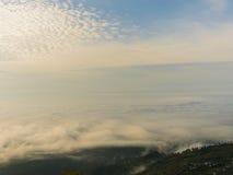 在山森林的雾早晨 免版税库存照片