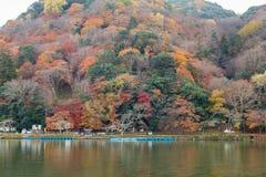 在山水前面的多棵颜色树在京都日本 免版税库存图片