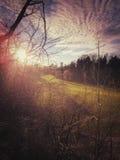 在山沟的下午 图库摄影